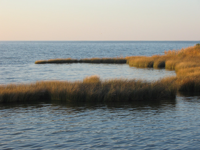 Sound Marshes